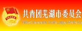 芜湖市共青团
