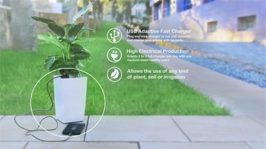 利用光合作用发电的Bioo盆栽